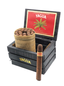 Yagua Toro Box of 20